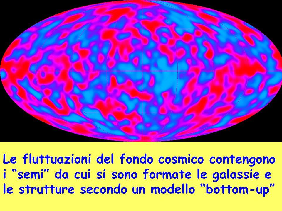 Le fluttuazioni del fondo cosmico contengono