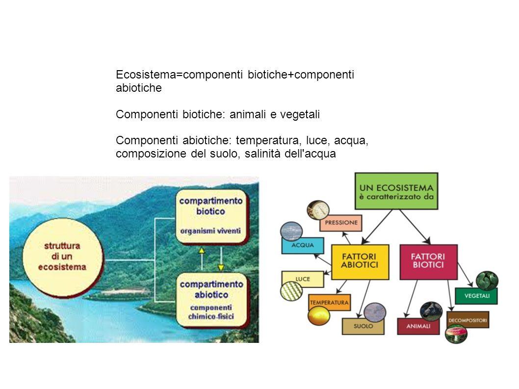 Ecosistema=componenti biotiche+componenti abiotiche