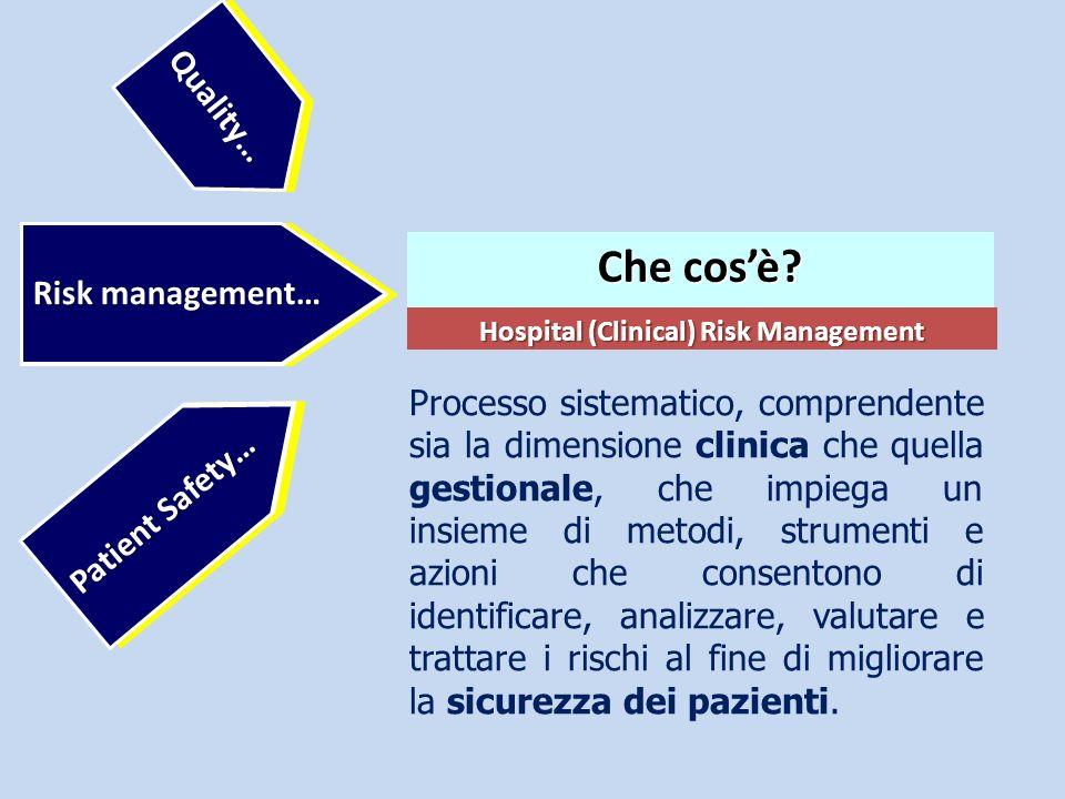 Hospital (Clinical) Risk Management