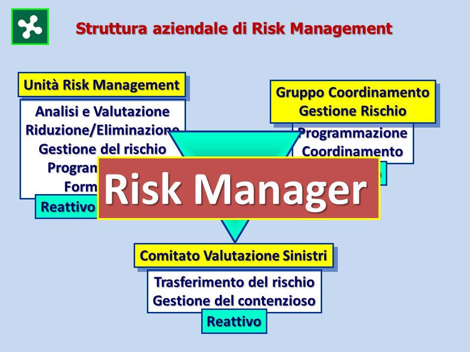 Risk Manager Struttura aziendale di Risk Management