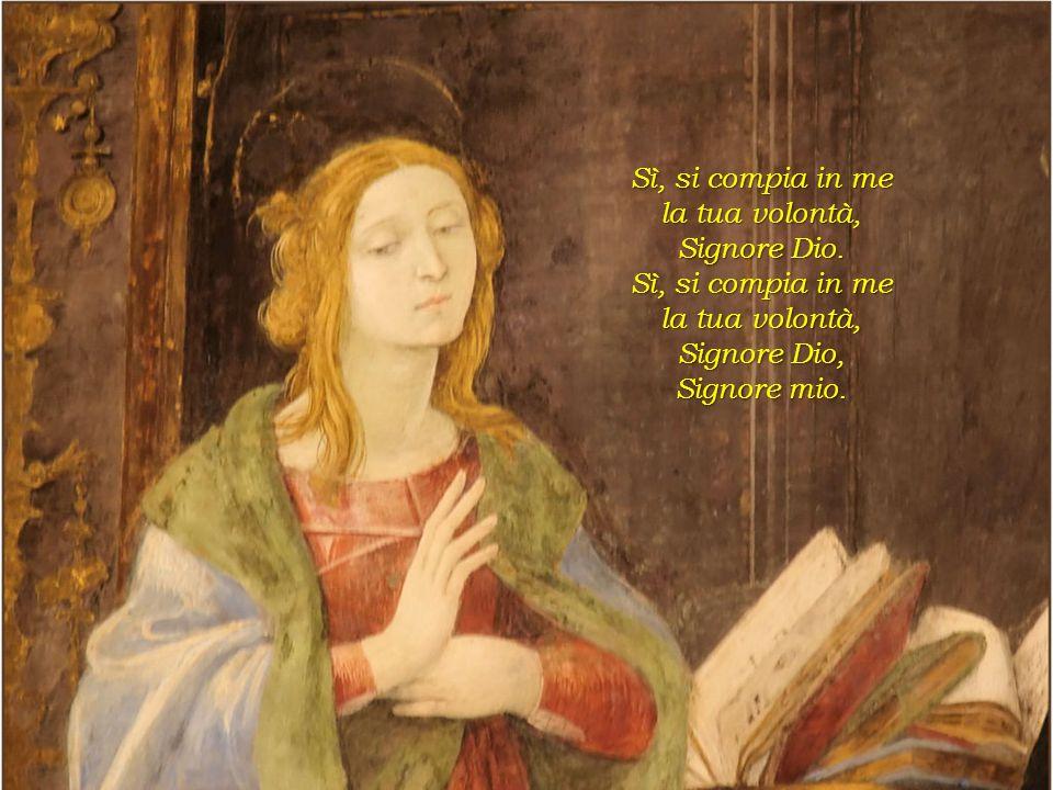 Sì, si compia in me la tua volontà, Signore Dio. Signore Dio, Signore mio.