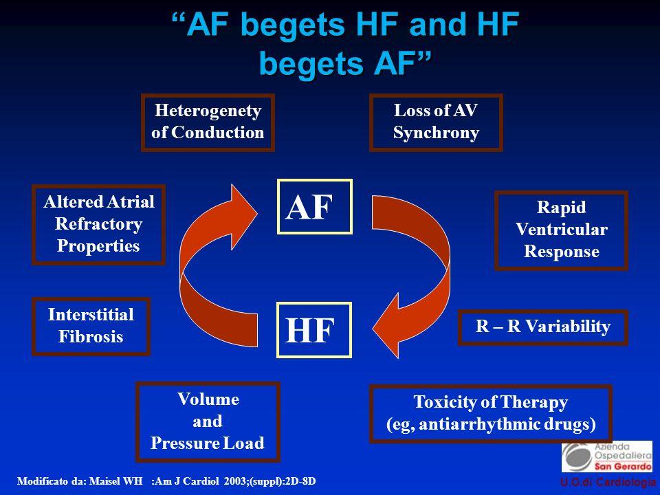 AF begets HF and HF begets AF