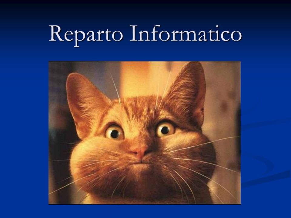 Reparto Informatico Comment est-ce possible
