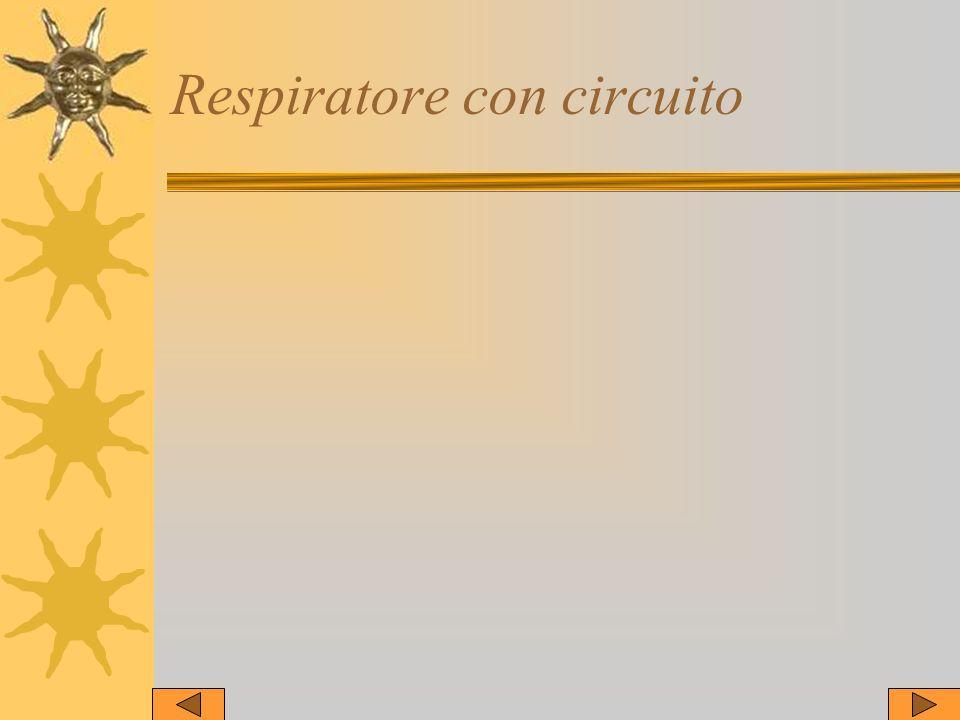 Respiratore con circuito