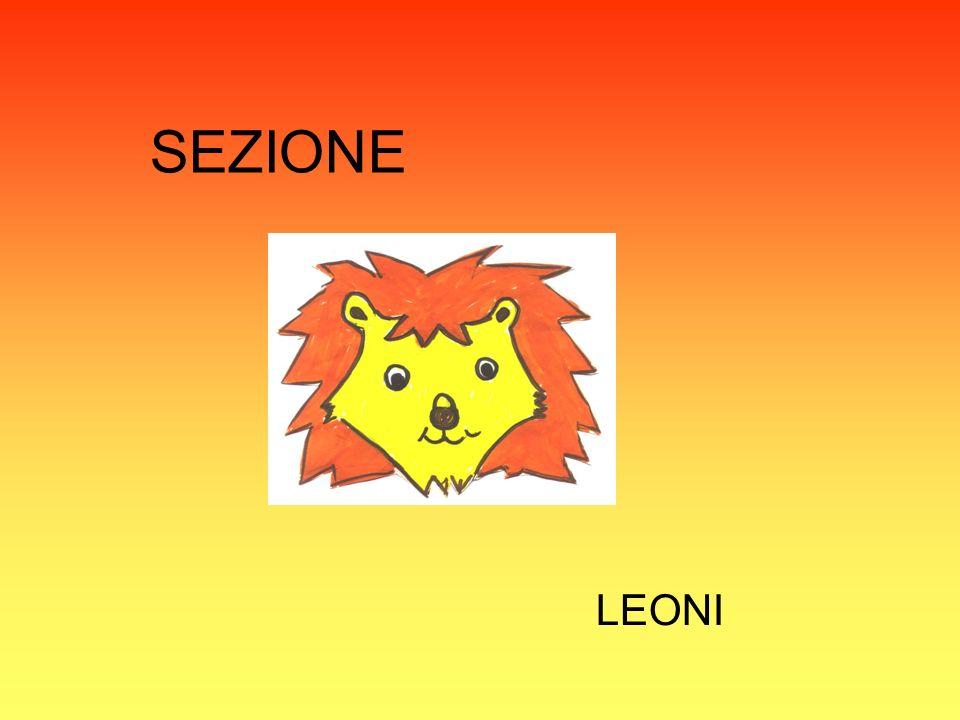 SEZIONE LEONI