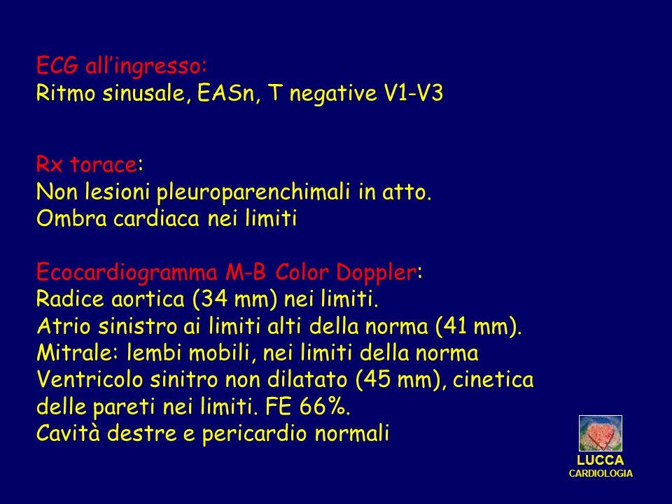 Ritmo sinusale, EASn, T negative V1-V3