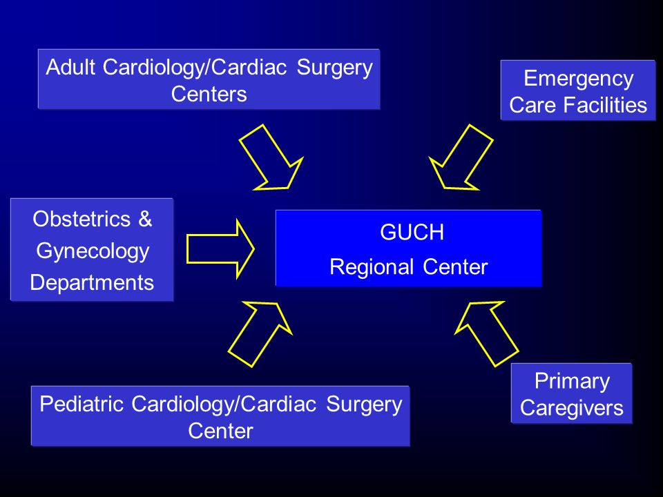 Adult Cardiology/Cardiac Surgery Centers Emergency Care Facilities