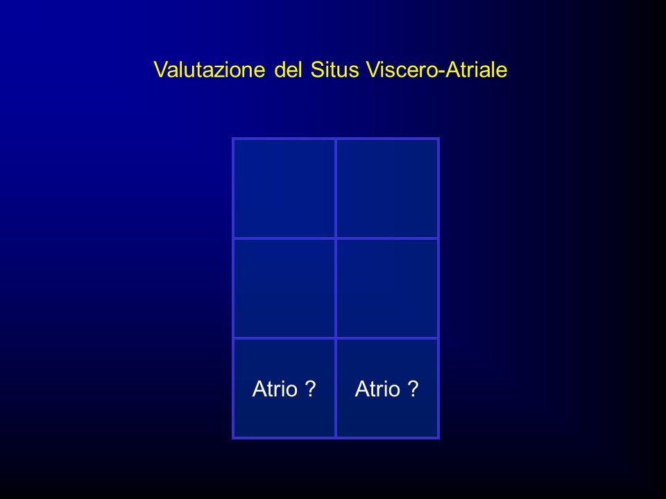 Valutazione del Situs Viscero-Atriale