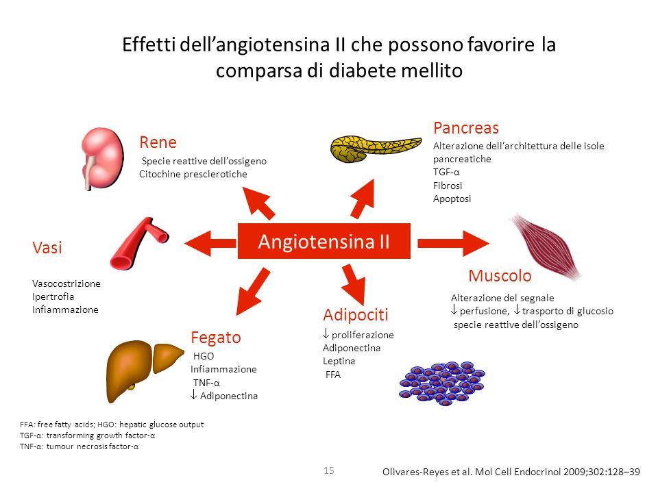 Effetti dell'angiotensina II che possono favorire la comparsa di diabete mellito