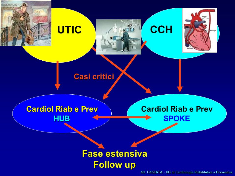 UTIC CCH Fase estensiva Follow up Casi critici Cardiol Riab e Prev HUB
