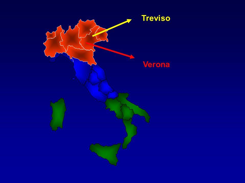 Treviso Verona