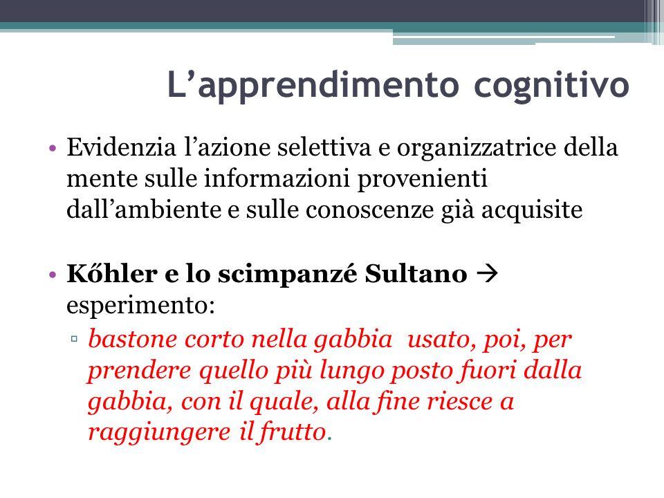 L'apprendimento cognitivo