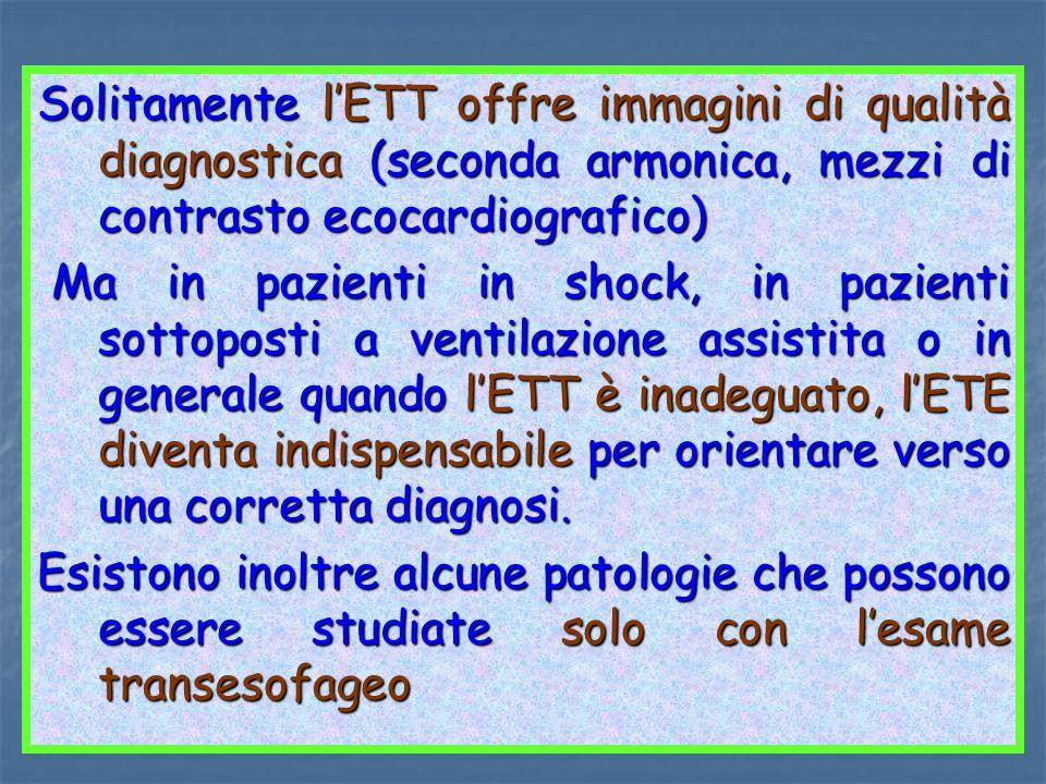 Solitamente l'ETT offre immagini di qualità diagnostica (seconda armonica, mezzi di contrasto ecocardiografico)