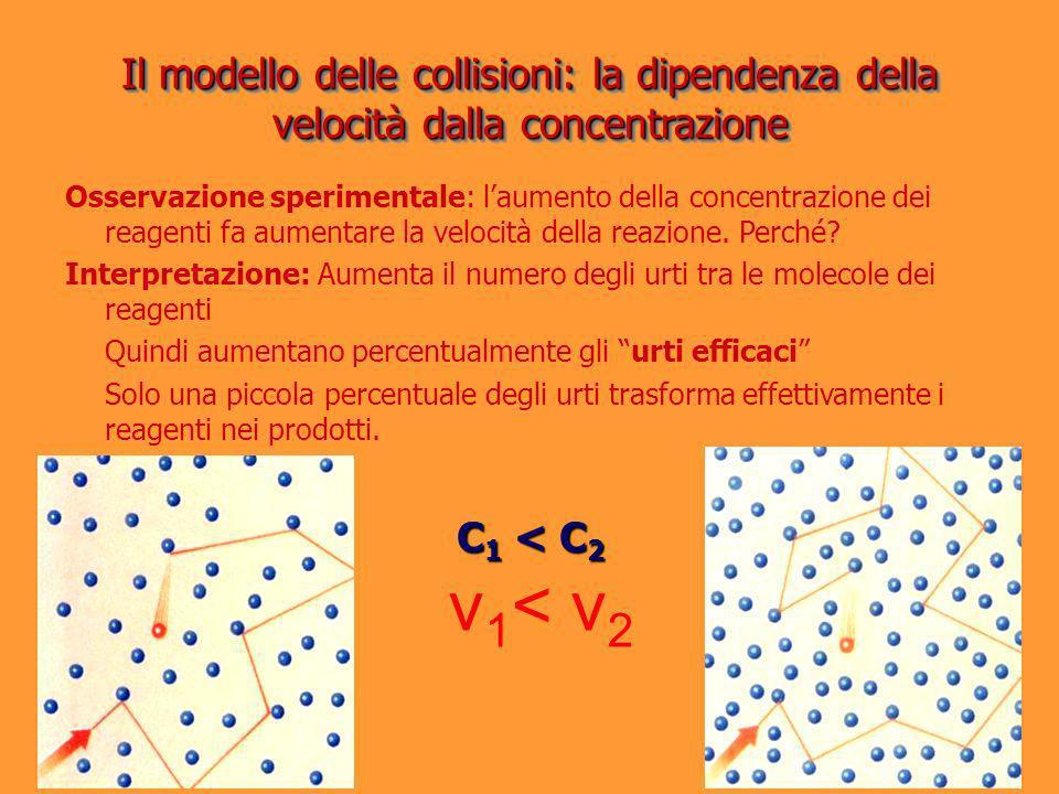 Il modello delle collisioni: la dipendenza della velocità dalla concentrazione