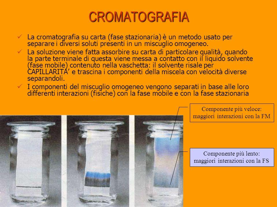 CROMATOGRAFIA La cromatografia su carta (fase stazionaria) è un metodo usato per separare i diversi soluti presenti in un miscuglio omogeneo.