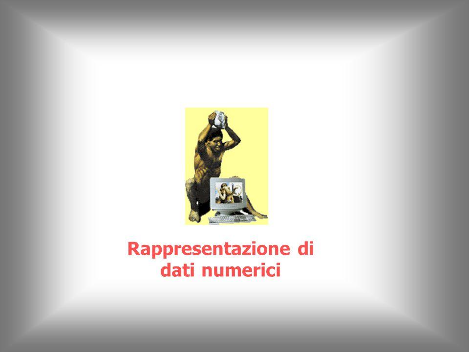 Rappresentazione di dati numerici