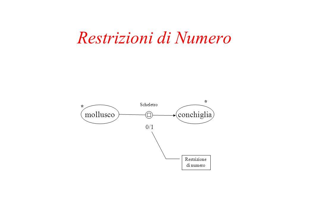 Restrizioni di Numero mollusco conchiglia 0/1 Scheletro