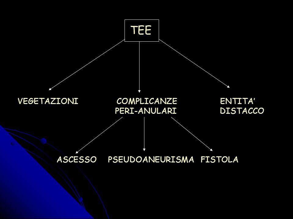 TEE VEGETAZIONI COMPLICANZE ENTITA' PERI-ANULARI DISTACCO