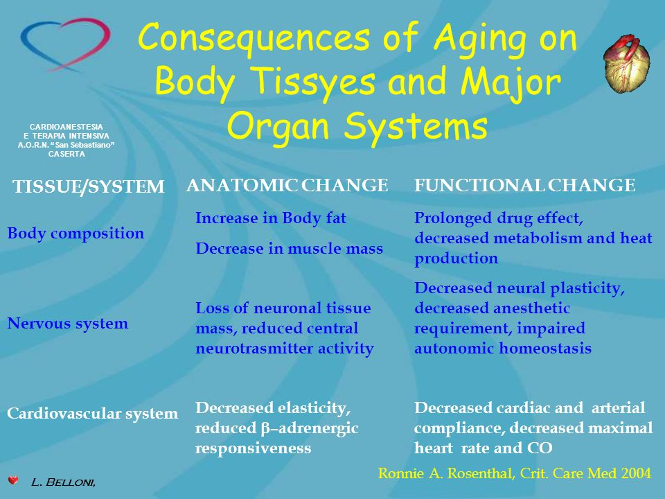 Consequences of Aging on Body Tissyes and Major Organ Systems