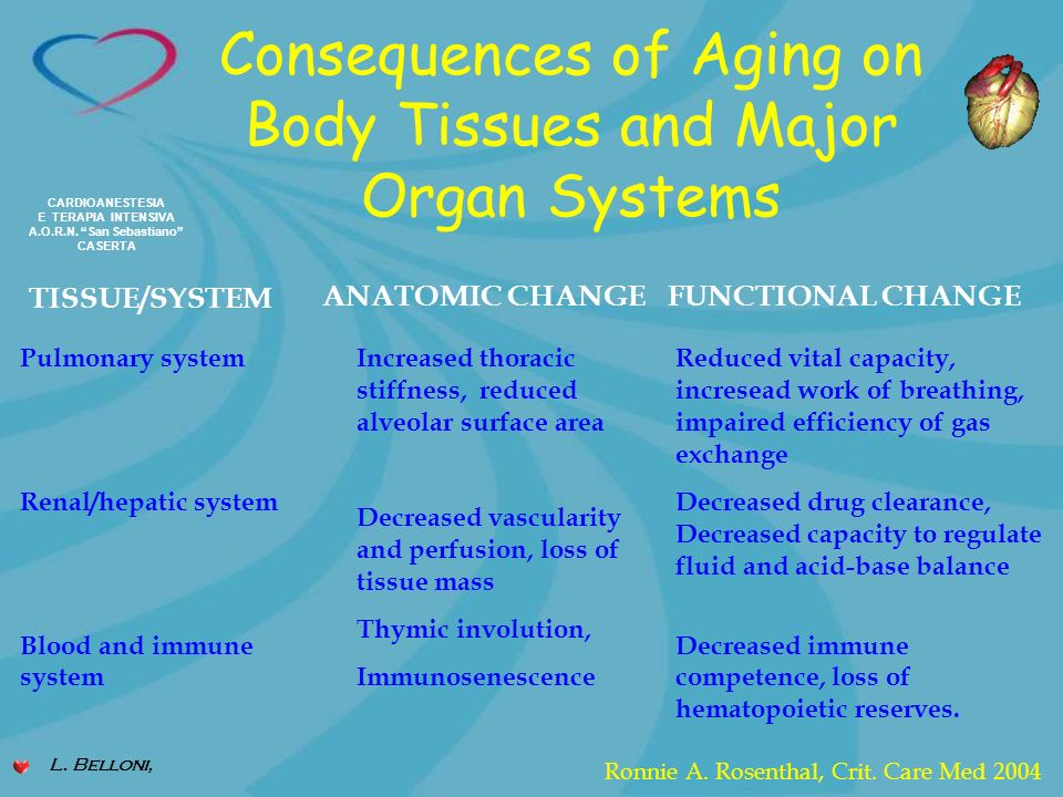 Consequences of Aging on Body Tissues and Major Organ Systems
