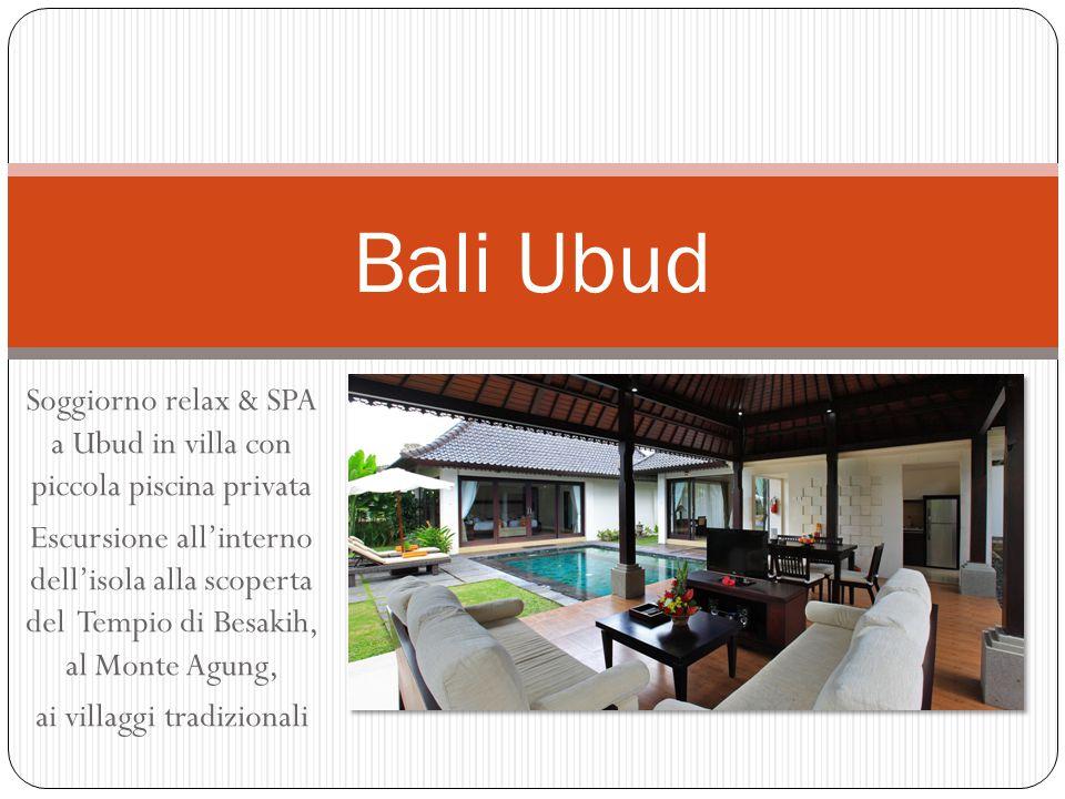 Bali Ubud Soggiorno relax & SPA a Ubud in villa con piccola piscina privata.
