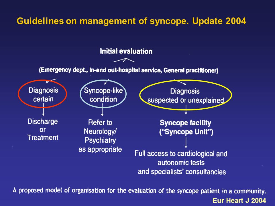 Guidelines on management of syncope. Update 2004