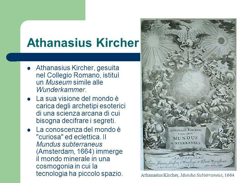 Athanasius Kircher Athanasius Kircher, gesuita nel Collegio Romano, istituì un Museum simile alle Wunderkammer.