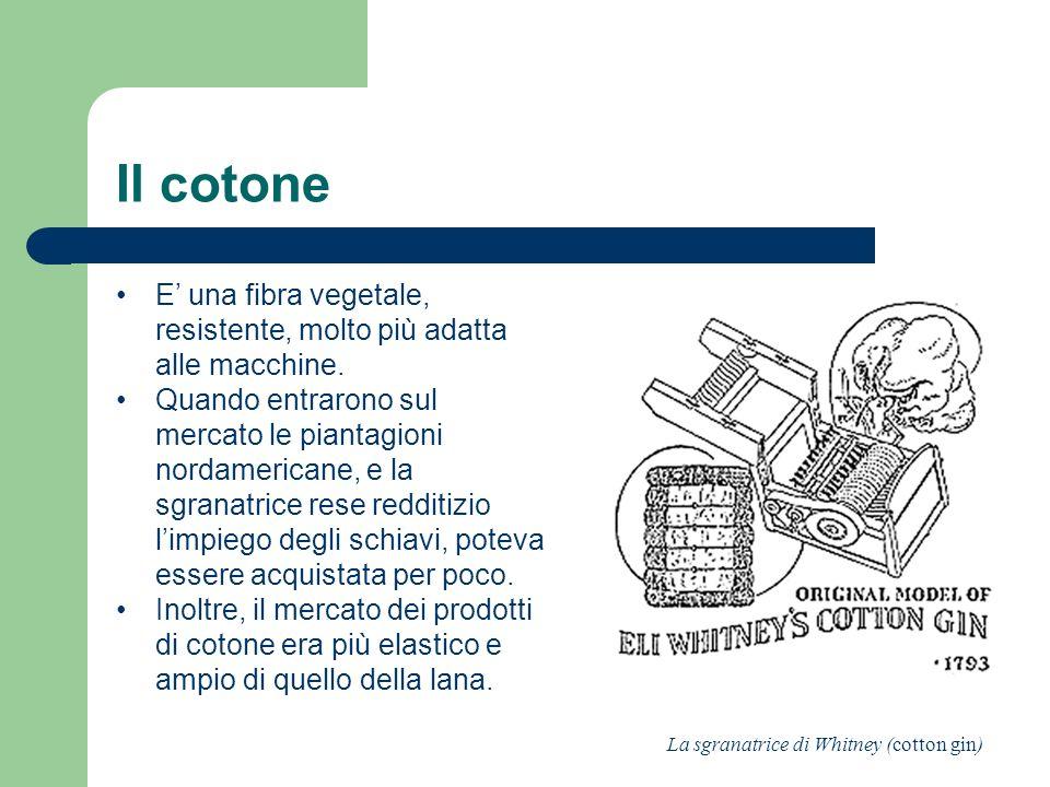 Il cotone E' una fibra vegetale, resistente, molto più adatta alle macchine.