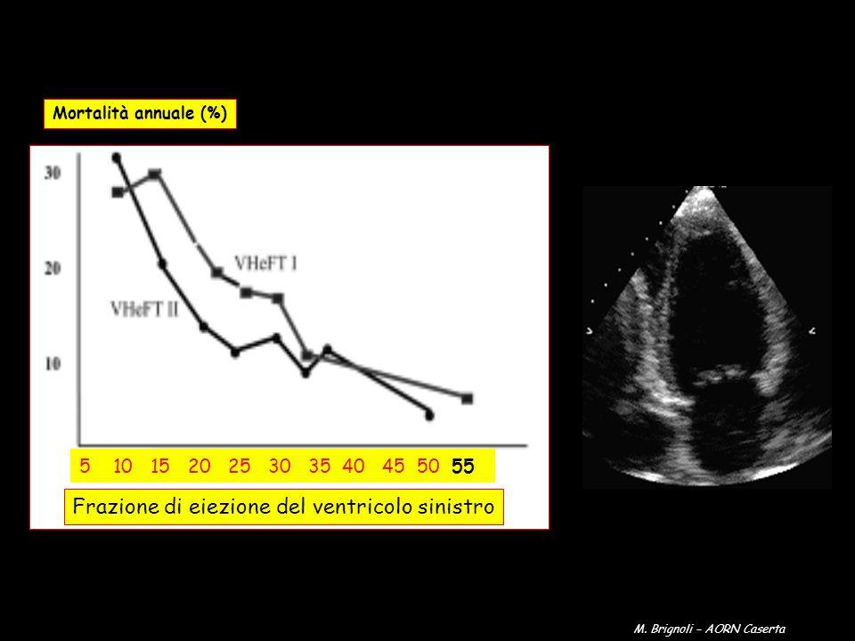 Frazione di eiezione del ventricolo sinistro