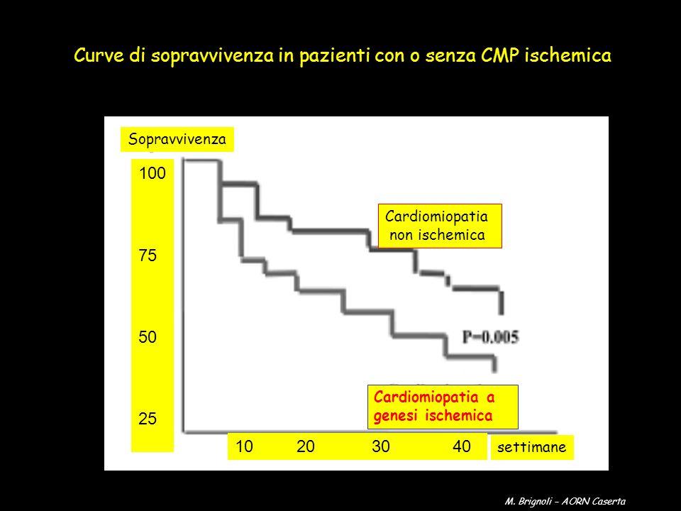 Curve di sopravvivenza in pazienti con o senza CMP ischemica