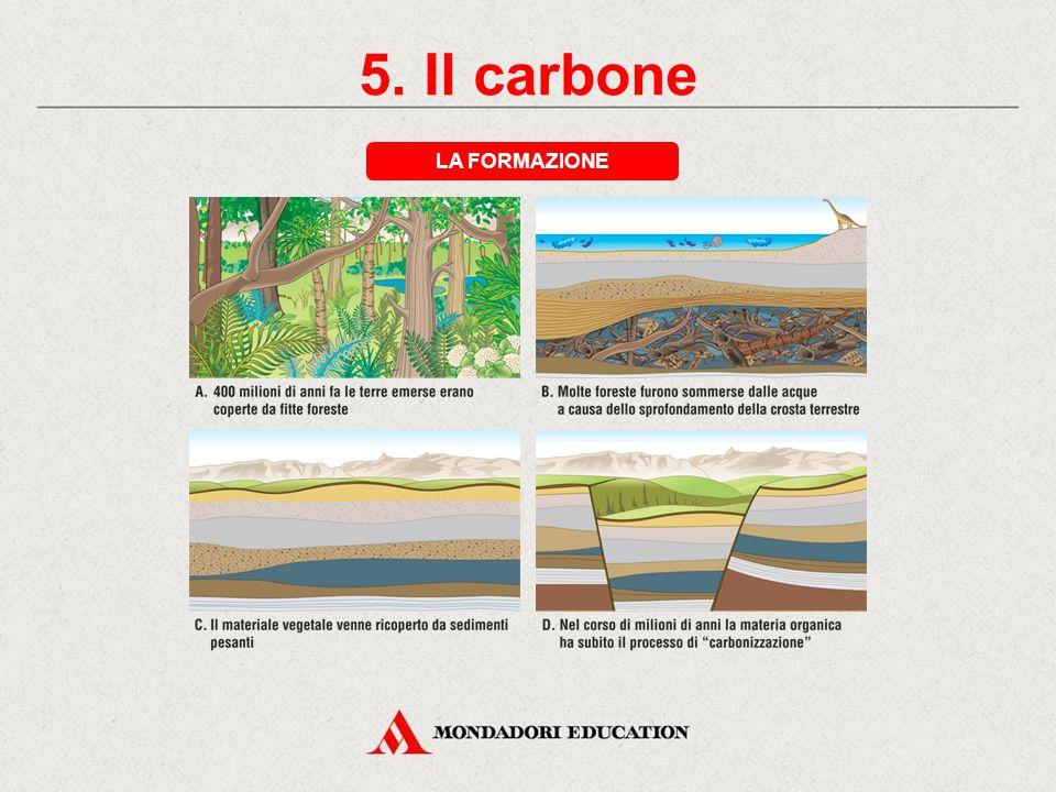 5. Il carbone LA FORMAZIONE * *