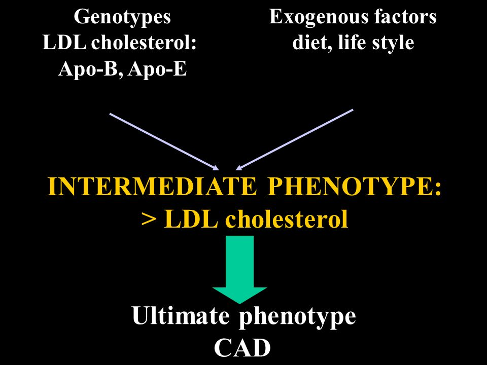 INTERMEDIATE PHENOTYPE: