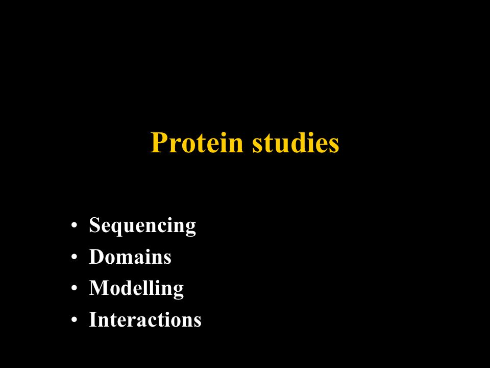 Protein studies Sequencing Domains Modelling Interactions