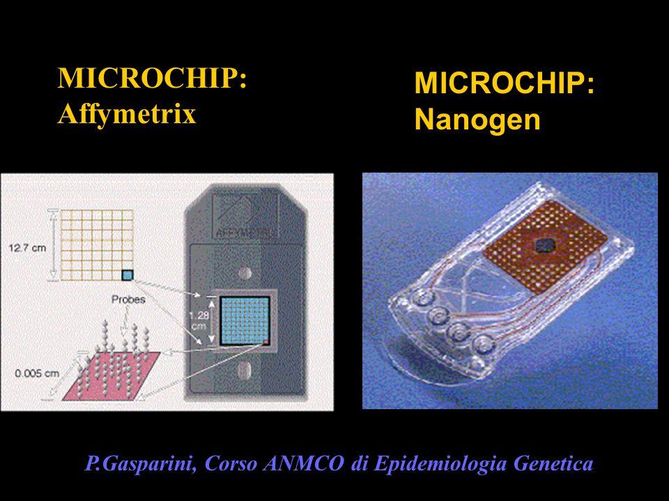 MICROCHIP: MICROCHIP: Affymetrix Nanogen