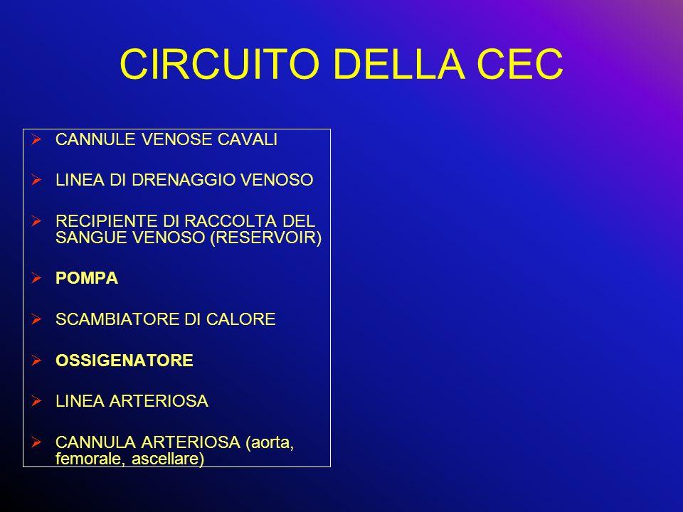 CIRCUITO DELLA CEC CANNULE VENOSE CAVALI LINEA DI DRENAGGIO VENOSO