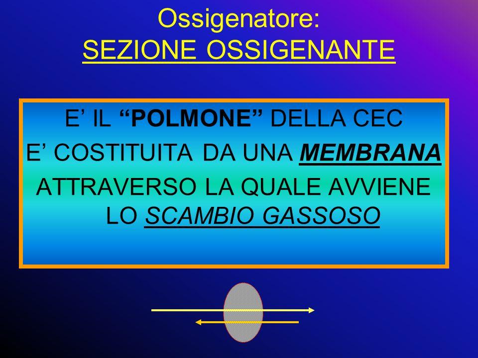 Ossigenatore: SEZIONE OSSIGENANTE