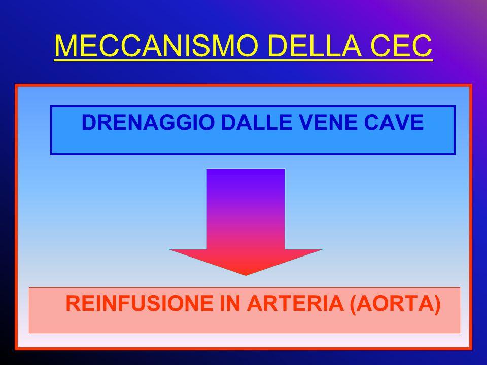 DRENAGGIO DALLE VENE CAVE