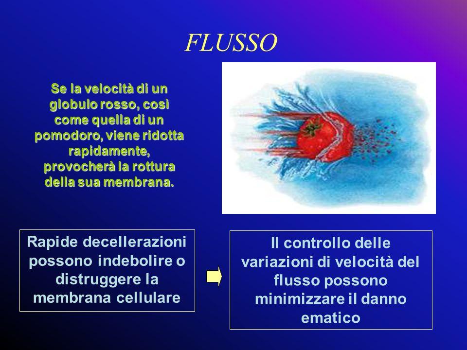 FLUSSO Se la velocità di un globulo rosso, così come quella di un pomodoro, viene ridotta rapidamente, provocherà la rottura della sua membrana.