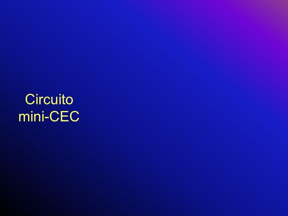 Circuito mini-CEC