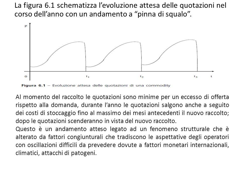 La figura 6.1 schematizza l'evoluzione attesa delle quotazioni nel corso dell'anno con un andamento a pinna di squalo .