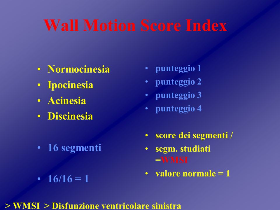 Wall Motion Score Index