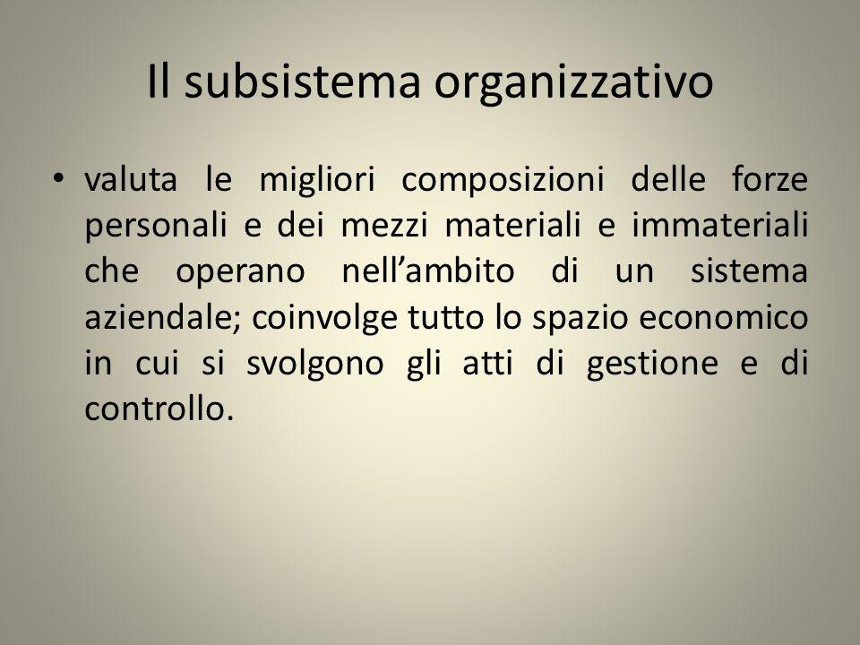 Il subsistema organizzativo
