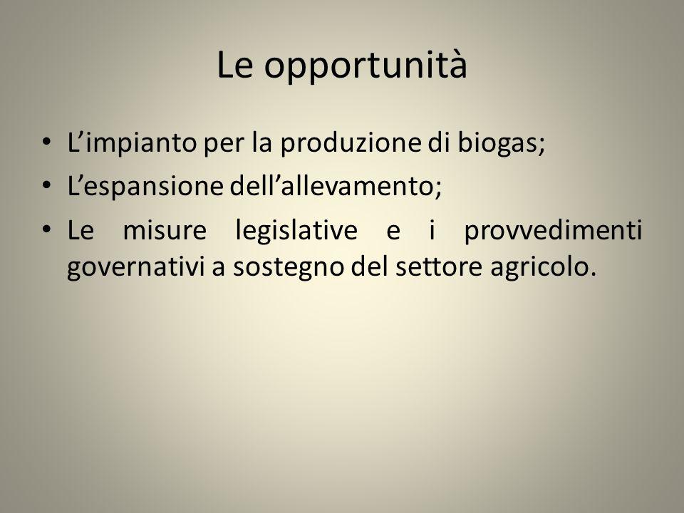 Le opportunità L'impianto per la produzione di biogas;