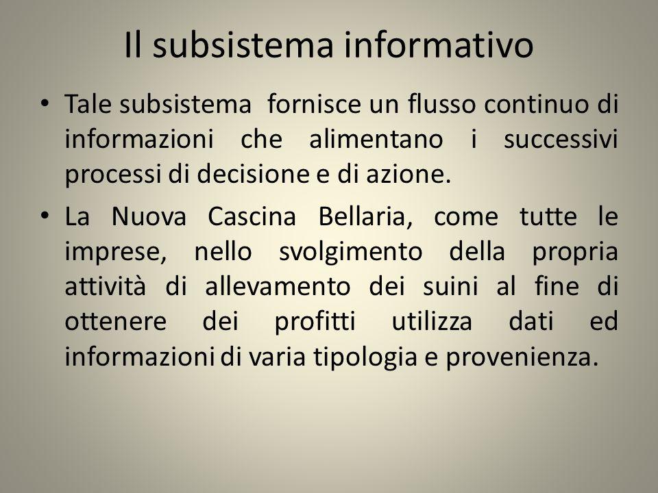 Il subsistema informativo