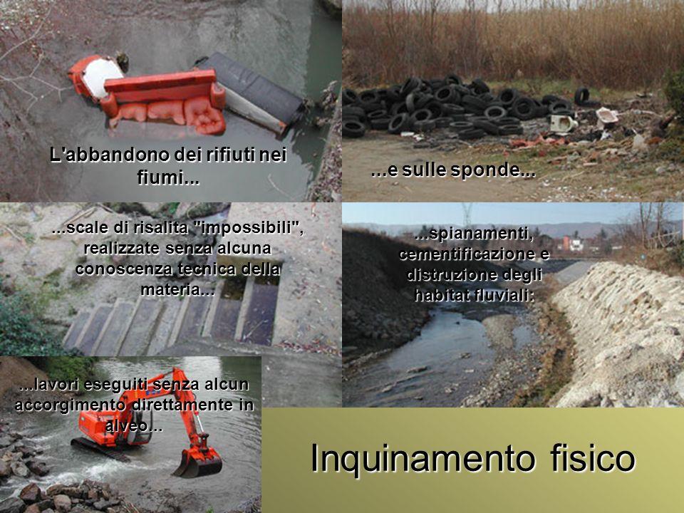 Inquinamento fisico L abbandono dei rifiuti nei fiumi...