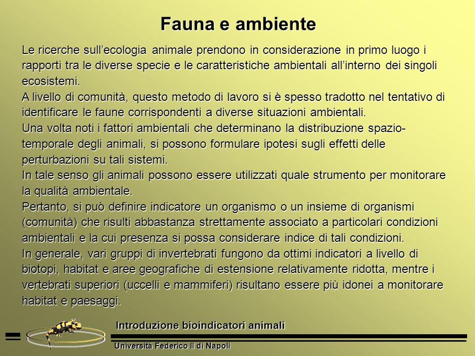 Fauna e ambiente