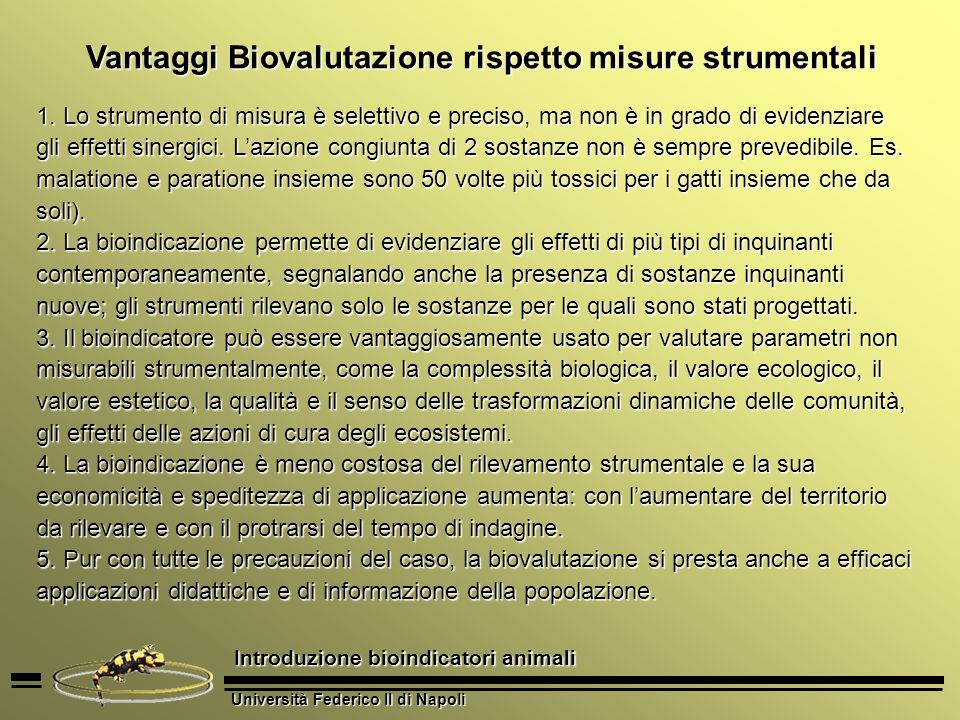 Vantaggi Biovalutazione rispetto misure strumentali
