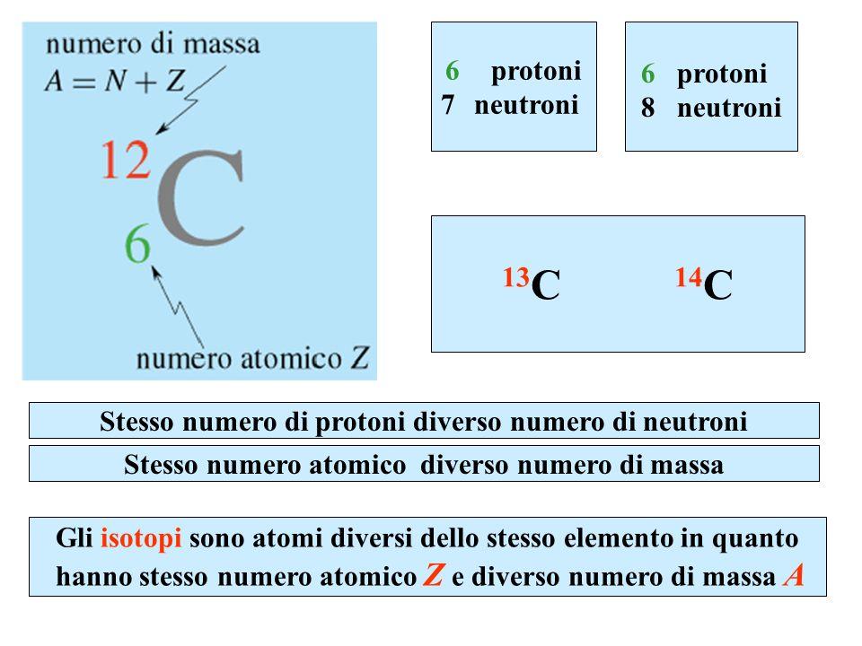 13C 14C 6 protoni 7 neutroni 6 protoni 8 neutroni