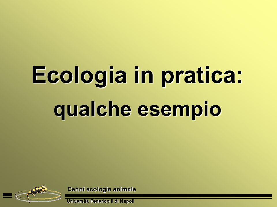 Ecologia in pratica: qualche esempio