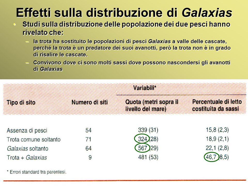 Effetti sulla distribuzione di Galaxias